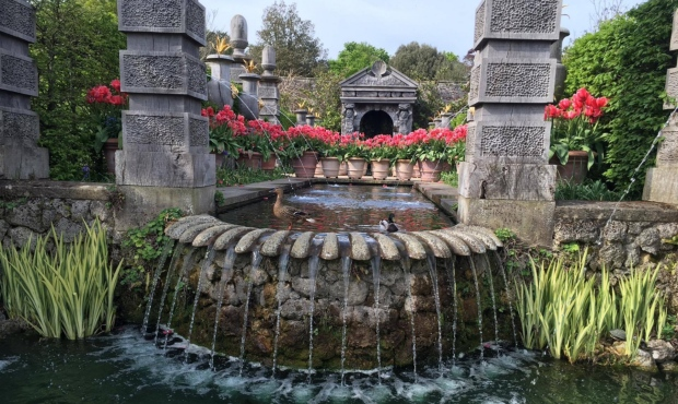 Замък Arundel градини