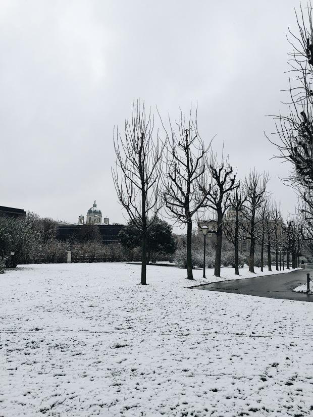 Volksgarten park Vienna Austria
