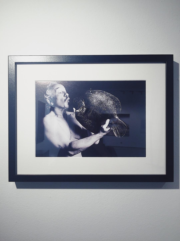 FishLove exhibition Credo Bonum Gallery