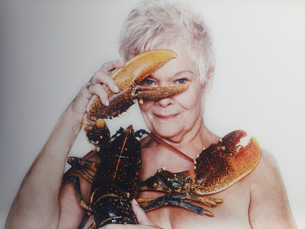FishLove actress Judy Dench with European Lobster