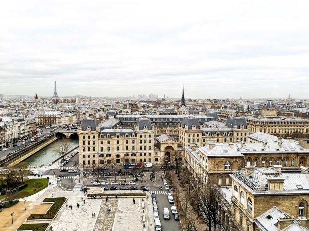 Notre Dame de Paris - towers tour prices and opening hours timetable - Ile de la Cite