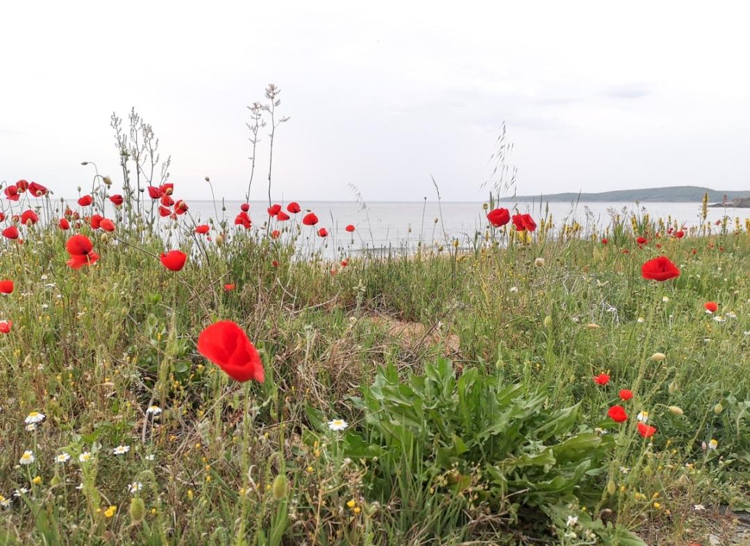 Top 3 beaches in Bulgaria Black Sea