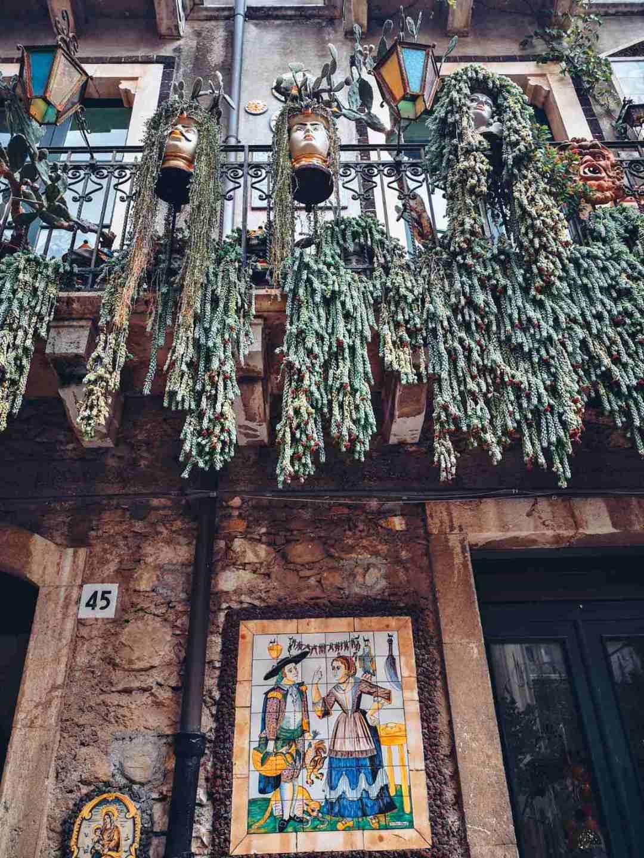 Succulent plants in Taormina Sicila