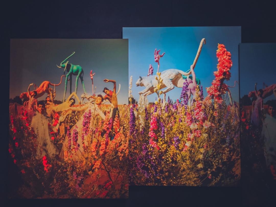 Tim Walker exhibition at the Victoria&Albert museum in London